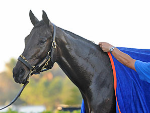 Uncle Mo Tops First NTRA 3YO Poll