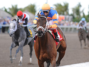 Uncle Mo Favored in March Derby Future Wager