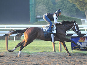 Uncle Mo works at Saratoga on July 28, 2011.