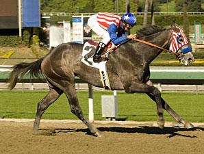 Uncle Sam Maiden Win, 12/27/2010