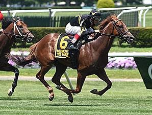 Undrafted wins the 2014 Jaipur.
