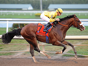 Woods: Union Rags, Big Brown Two of a Kind