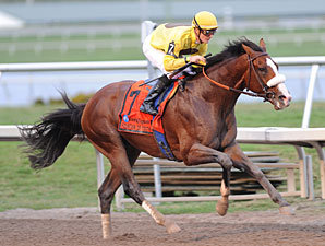Union Rags Gallops Away in Fountain of Youth