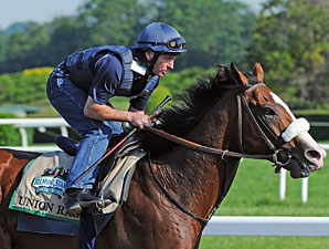 Union Rags - Belmont Park, June 8, 2012.