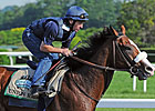 Union Rags Early Belmont Favorite