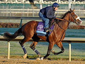 Union Rags Ready for Fountain of Youth