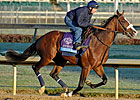 Union Rags Back in Light Training