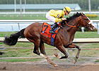 Union Rags Draws Post 6 in Florida Derby