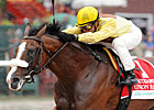 Union Rags&#39; Special Win Hope for Sire&#39;s Line