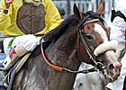 Union Rags Quickly Ships Back to Fair Hill
