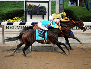 Paynter Threw Shoe in Belmont, Baffert Says
