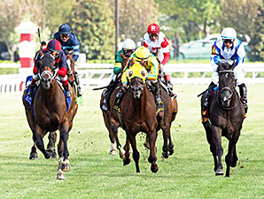 Unitarian wins the 2014 Dixiana Elkhorn.