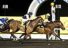 United Color Speeds to Dubawi Win