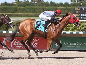 Uno Caliente wins the 2010 Birdonthewire Stakes.