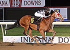 Indiana Champ Unreachable Star Retired at 10