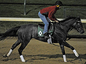 Unrivaled Belle works at Churchill Downs for the Breeders' Cup 2010.