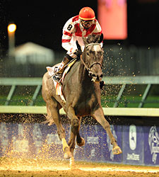 Breeders' Cup Enjoys First Day Increases