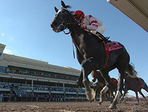 Unrivaled Belle wins the 2010 Rampart.