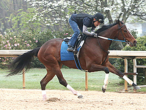 Untapable works at Oaklawn Park April 6.