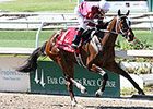 Untapable Breezes at Churchill Downs