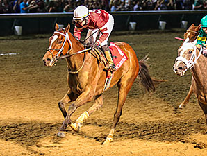 Untapable Headlines Fair Grounds Oaks