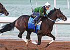 Untapable, Tapiture Work Early at Keeneland