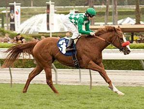 Unzip Me wins the 2010 Las Cienegas.