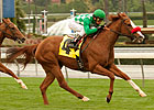 Santa Anita Meet Commences With Maddy Stakes