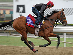 Up -  Breeders' Cup 2012.