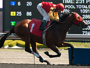Up With the Birds Dominates Marine Stakes