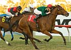Grade I Winner Vacare Retired