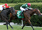 Vacare Stands Out in Full Palomar Field