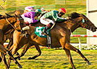 Vacare Goes Overland to Win Palomar 'Cap