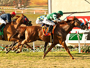 Vagabound Shoes wins the 2013 Del Mar Handicap.