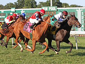Valiant Girl wins the 2013 Omnibus Stakes.