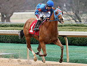 Valid Commander wins the 2014 Nodouble Breeders' Stakes.