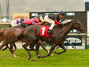 Vamo a Galupiar Gets Up in Soggy Santa Ana
