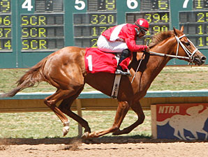 Vanasee wins the 2010 Colorado Bred Stallion Stakes Filly Division.