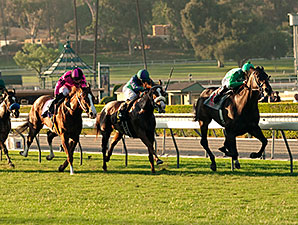 Velvet Mesquite wins the 2014 California Distaff Handicap.