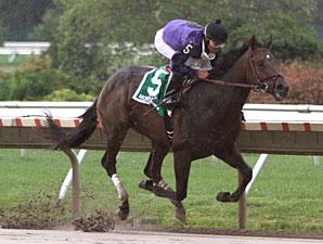 Vengeful Wildcat wins the 2010 Tyro Stakes.