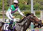 Ventura Takes Filly &amp; Mare Sprint