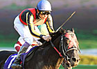 Vermilion Scores in Japan Cup Dirt
