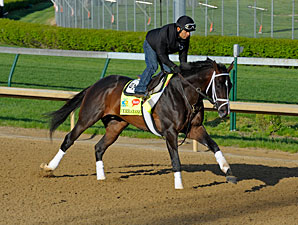 Verrazano - Churchill Downs April 26, 2013.