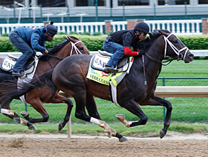 Verrazano works at Churchill Downs April 27.