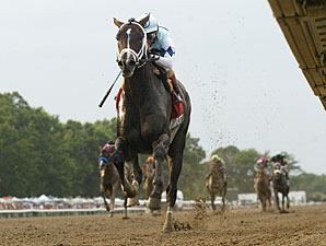 Verrazano wins the Haskell Invitational.