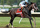 Verrazano, Palace Malice Set for Travers