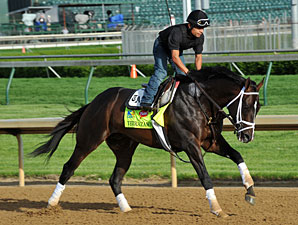 Verrazano - Churchill Downs May 2, 2013.