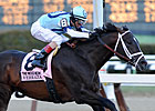 Verrazano Gallops, Others Settle In
