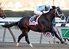 Verrazano Holds in Formful Wood Memorial