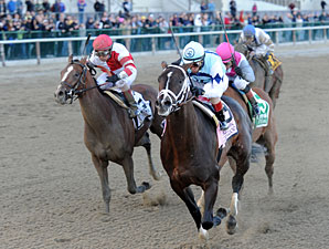 Verrazano wins the 2013 Wood Memorial.